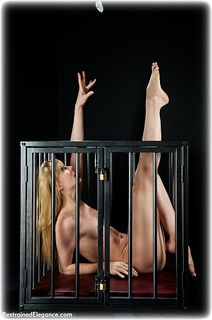 Bondage photo pic picture Ariel Anderssen barefoot, slave training, cage, metal bondage, nude, ungagged