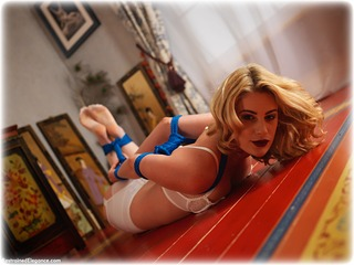 Bondage photo pic picture Artemis Fauna blonde, hogtie, lingerie, stockings, ungagged, rope bondage