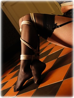 Bondage photo pic picture Bex White rope bondage, blonde, lingerie, stockings, ungagged