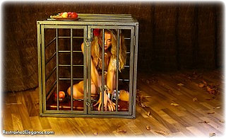 Bondage photo pic picture Jasmine Sinclair barefoot, shackles, cage, leg irons, chains, metal bondage, collar, nude