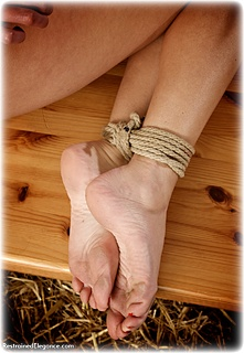 Bondage photo pic picture Kobe Lee rope bondage, barefoot, humiliation, medieval, nude, topless