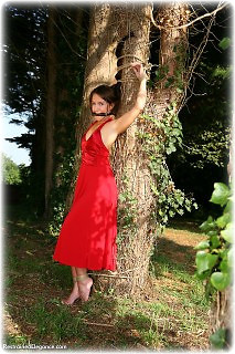 Bondage photo pic picture Sammie B ballgown, rope bondage, barefoot, satin, bit gag, silk, outdoor