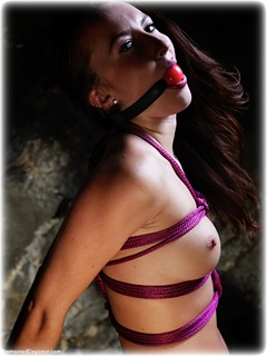 Bondage photo pic picture Sophia Smith ballgag, rope bondage, barefoot, brunette, strappado, nude, ungagged, dungeon