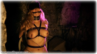 Bondage photo pic picture Bad Dolly rope bondage, barefoot, bit gag, blindfold, blonde, mockumentary, nipple clamps, nude, thriller, dungeon